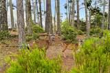 250 Forest Ridge Rd 27 - Photo 39