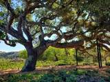 12 Oak Meadow Lane - Photo 19