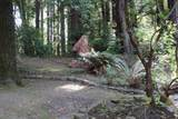 5649 Hillside Dr - Photo 79