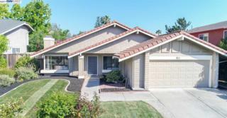 45175 Onondaga Dr, Fremont, CA 94539 (#BE40782672) :: Carrington Real Estate Services