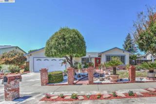47581 Zunic Dr, Fremont, CA 94539 (#BE40782785) :: Carrington Real Estate Services