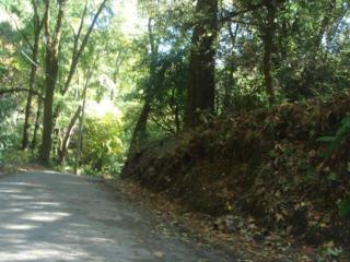17320 Stevens Canyon Rd, Cupertino, CA 95014 (#ML81632730) :: Brett Jennings Real Estate Experts