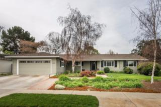1194 Via Mateo, San Jose, CA 95120 (#ML81638608) :: The Goss Real Estate Group, Keller Williams Bay Area Estates