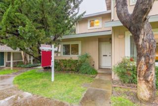 10059 Dove Oak Ct, Cupertino, CA 95014 (#ML81639484) :: The Goss Real Estate Group, Keller Williams Bay Area Estates