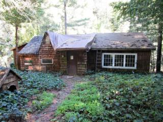 310 Old River Ln, Brookdale, CA 95007 (#ML81641427) :: Brett Jennings Real Estate Experts