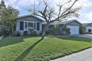 1550 Trevor Dr, San Jose, CA 95118 (#ML81642725) :: The Goss Real Estate Group, Keller Williams Bay Area Estates