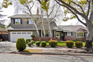 247 Pinehurst Ave, Los Gatos, CA 95032 (#ML81642810) :: The Goss Real Estate Group, Keller Williams Bay Area Estates