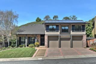 1007 Mazzone Dr, San Jose, CA 95120 (#ML81643052) :: The Goss Real Estate Group, Keller Williams Bay Area Estates