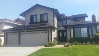1098 Micro Pl, San Jose, CA 95120 (#ML81643181) :: The Goss Real Estate Group, Keller Williams Bay Area Estates