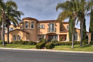 5681 La Seyne Pl, San Jose, CA 95138 (#ML81643283) :: The Goss Real Estate Group, Keller Williams Bay Area Estates