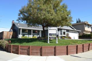 5952 Via Madero Dr, San Jose, CA 95120 (#ML81643367) :: The Goss Real Estate Group, Keller Williams Bay Area Estates