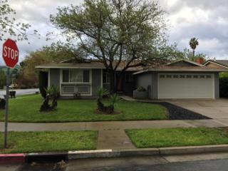2702 Scottsdale Dr, San Jose, CA 95148 (#ML81643555) :: The Goss Real Estate Group, Keller Williams Bay Area Estates