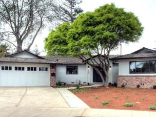 3386 Awalt Dr, Mountain View, CA 94040 (#ML81643573) :: The Goss Real Estate Group, Keller Williams Bay Area Estates