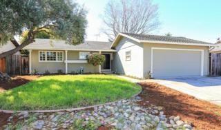 826 Rivera St, Milpitas, CA 95035 (#ML81643719) :: The Goss Real Estate Group, Keller Williams Bay Area Estates