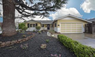 1760 Albert Ave, San Jose, CA 95124 (#ML81643724) :: The Goss Real Estate Group, Keller Williams Bay Area Estates