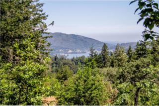 22065 Old Santa Cruz Hwy, Los Gatos, CA 95033 (#ML81643746) :: The Goss Real Estate Group, Keller Williams Bay Area Estates