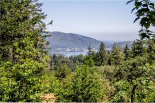 22045 Old Santa Cruz Hwy, Los Gatos, CA 95033 (#ML81643756) :: The Goss Real Estate Group, Keller Williams Bay Area Estates