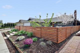 1304 Ashcroft Ln, San Jose, CA 95118 (#ML81643790) :: The Goss Real Estate Group, Keller Williams Bay Area Estates