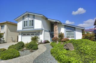 145 Fontainbleu Ct, Milpitas, CA 95035 (#ML81643870) :: The Goss Real Estate Group, Keller Williams Bay Area Estates