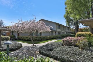 1509 Rhinecliff Way, San Jose, CA 95126 (#ML81644015) :: The Goss Real Estate Group, Keller Williams Bay Area Estates