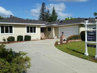 12517 Palmtag Dr, Saratoga, CA 95070 (#ML81644042) :: The Goss Real Estate Group, Keller Williams Bay Area Estates