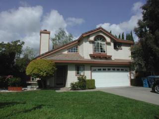 523 Altamont Dr, Milpitas, CA 95035 (#ML81644091) :: The Goss Real Estate Group, Keller Williams Bay Area Estates