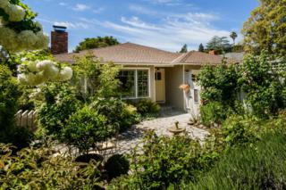 2410 Cipriani Blvd, Belmont, CA 94002 (#ML81648192) :: The Gilmartin Group