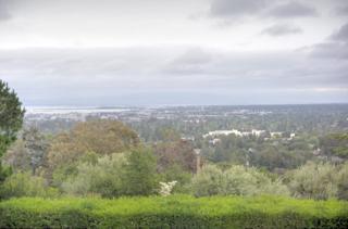 41 Hidden Way, Redwood City, CA 94062 (#ML81648403) :: The Gilmartin Group