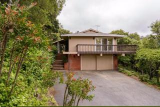 1036 Silver Hill Rd, Redwood City, CA 94061 (#ML81648599) :: The Gilmartin Group