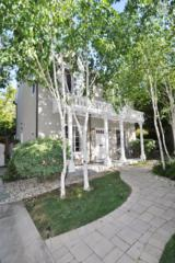 580 Penny Ln, Mountain View, CA 94043 (#ML81648944) :: The Gilmartin Group
