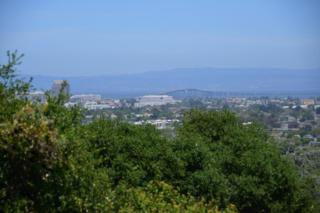 209 42nd Ave, San Mateo, CA 94403 (#ML81648963) :: The Gilmartin Group