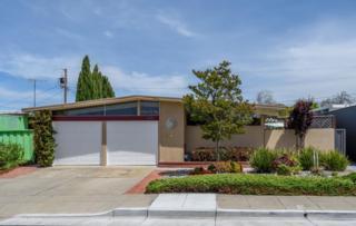1741 Celeste Dr, San Mateo, CA 94402 (#ML81648984) :: The Gilmartin Group