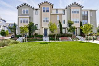 1573 Canal St, Milpitas, CA 95035 (#ML81649111) :: The Gilmartin Group