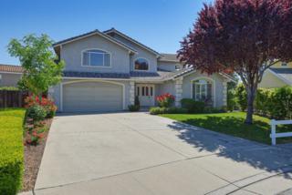 290 Berkshire Dr, Morgan Hill, CA 95037 (#ML81652931) :: Carrington Real Estate Services
