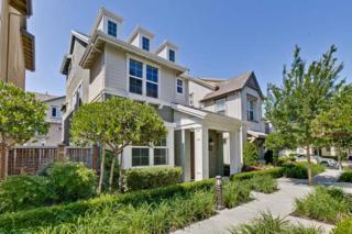 40256 Bonica Rose Ter, Fremont, CA 94538 (#ML81653022) :: Carrington Real Estate Services