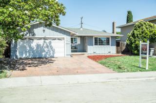 48298 Purpleleaf St, Fremont, CA 94539 (#ML81653044) :: Carrington Real Estate Services