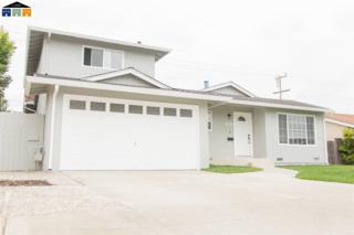 5211 Farina Ln, Fremont, CA 94538 (#MR40782786) :: Carrington Real Estate Services
