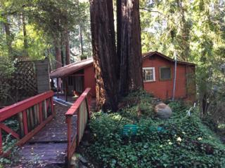 180 Brier Dr, Boulder Creek, CA 95006 (#ML81633932) :: Brett Jennings Real Estate Experts