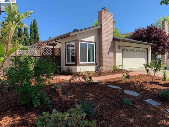 4217 Nerissa Cir, Fremont, CA 94555 (#BE40862376) :: Strock Real Estate