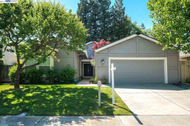307 Freitas Ct, Danville, CA 94526 (#BE40863455) :: Strock Real Estate