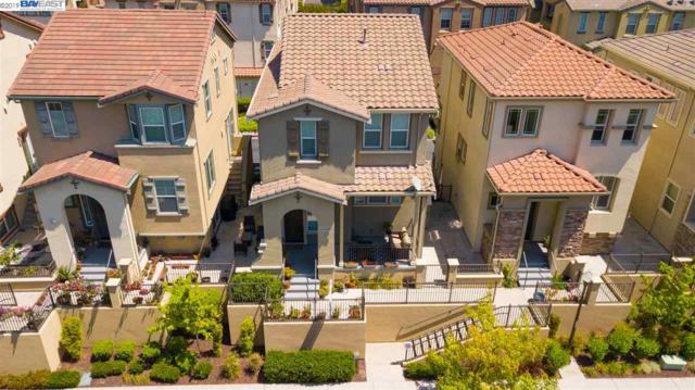48949 Air Fern Cmn, Fremont, CA 94539 (#BE40864543) :: Brett Jennings Real Estate Experts