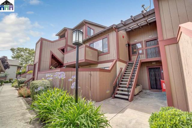 234 Hackamore Cmn, Fremont, CA 94539 (#MR40872776) :: Strock Real Estate