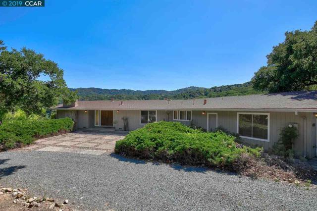 2450 Ridgewood Rd, Alamo, CA 94507 (#CC40869423) :: Strock Real Estate