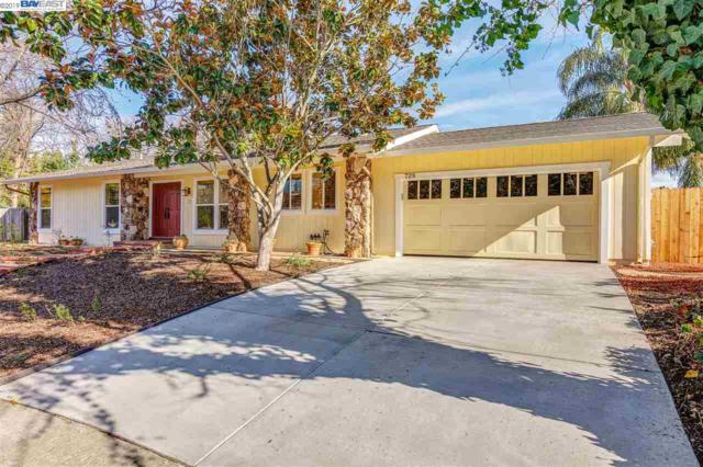 728 Black Point Place, Clayton, CA 94517 (#BE40851205) :: Strock Real Estate