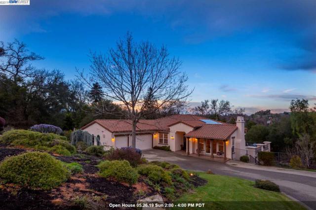 448 Bunker Ln, Pleasanton, CA 94566 (#BE40856835) :: Strock Real Estate