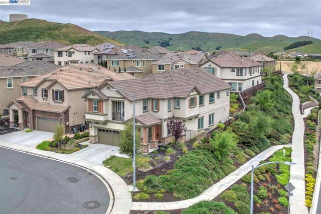 9539 Christina Joy Pl, Dublin, CA 94568 (#BE40865039) :: Strock Real Estate