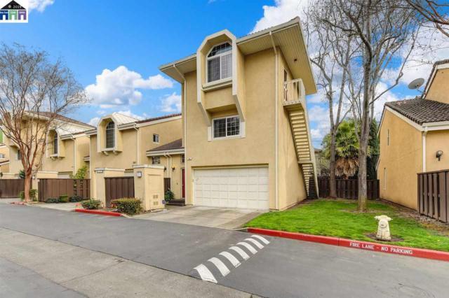 40 Blue Coral Ter, Fremont, CA 94536 (#MR40857731) :: Strock Real Estate