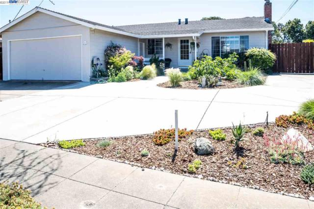 36147 Dalewood Dr, Newark, CA 94560 (#BE40860684) :: Strock Real Estate