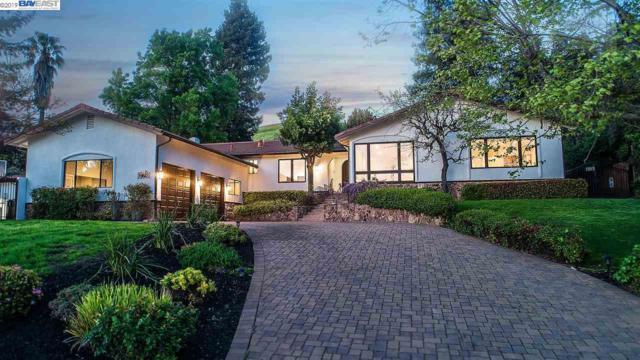 276 Guadalupe Ter, Fremont, CA 94539 (#BE40861398) :: Strock Real Estate