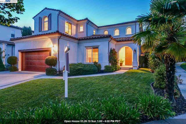 100 Black Calla Ct, San Ramon, CA 94582 (#BE40863587) :: Strock Real Estate